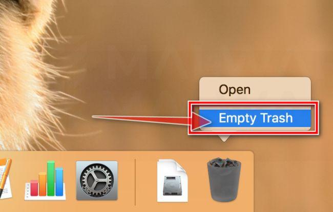 Haga clic con el botón derecho del ratón en la Papelera y seleccione Vaciar Papelera MacOS